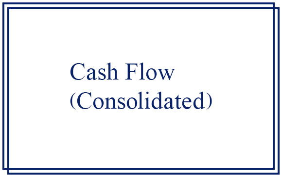 bnr_CashFlow_con.jpg